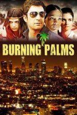 Nonton Film Burning Palms (2010) Subtitle Indonesia Streaming Movie Download