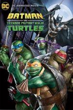 Nonton Film Batman vs. Teenage Mutant Ninja Turtles (2019) Subtitle Indonesia Streaming Movie Download