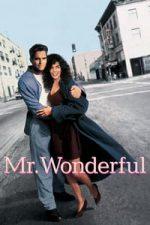 Nonton Film Mr. Wonderful (1993) Subtitle Indonesia Streaming Movie Download