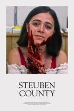 Nonton Film Steuben County (2020) Subtitle Indonesia Streaming Movie Download
