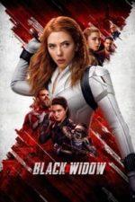 Nonton Film Black Widow (2021) Subtitle Indonesia Streaming Movie Download