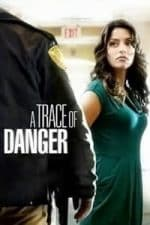 Nonton Film A Trace of Danger (2010) Subtitle Indonesia Streaming Movie Download