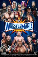 Nonton Film WWE Wrestlemania 33 Part 1 (2017) Subtitle Indonesia Streaming Movie Download