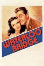 Nonton Film Waterloo Bridge (1940) Subtitle Indonesia Streaming Movie Download