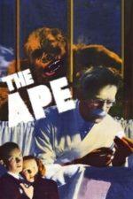 Nonton Film The Ape (1940) Subtitle Indonesia Streaming Movie Download