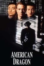 Nonton Film American Dragons (1998) Subtitle Indonesia Streaming Movie Download