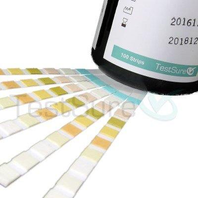 Urine Test Strips - 10 Parameter At Home Urinalysis Test Strips | Test Sure
