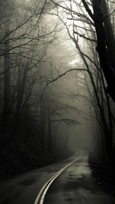 Dark Road Forest - The iPhone Wallpapers