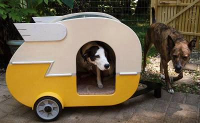 Dogs in Miniature RV's | thekitschwitch
