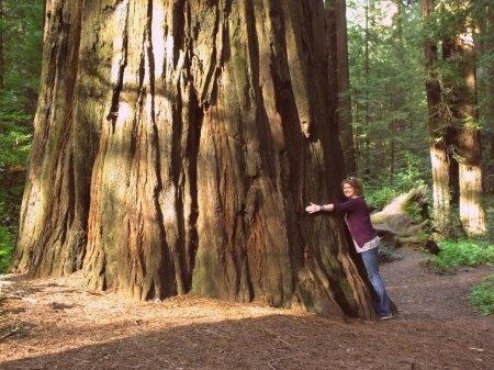 Dscf Hugging Of Trees