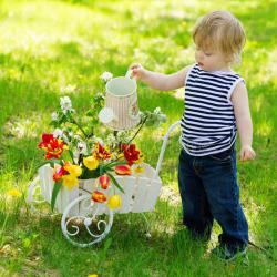 Cute Little Boy Watering Colorful Flowers Stock Image Image Of