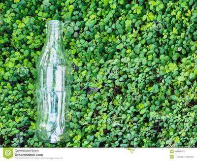 Bottle Glass On Green Background Stock Photo - Image: 59998743