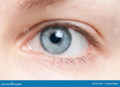 Human eye close-up stock image. Image of natural, lens - 22274231