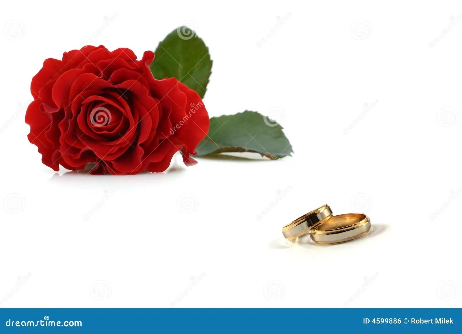 royalty free stock image wedding rings roses image rose wedding ring Wedding rings and roses