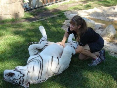 She is very Lucky Zookeeper – She Has the Best Job Ever – Amazing Nature
