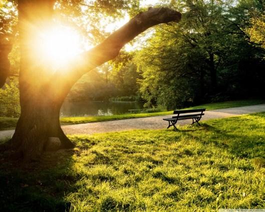 Prayer Answered | Nature Awareness School