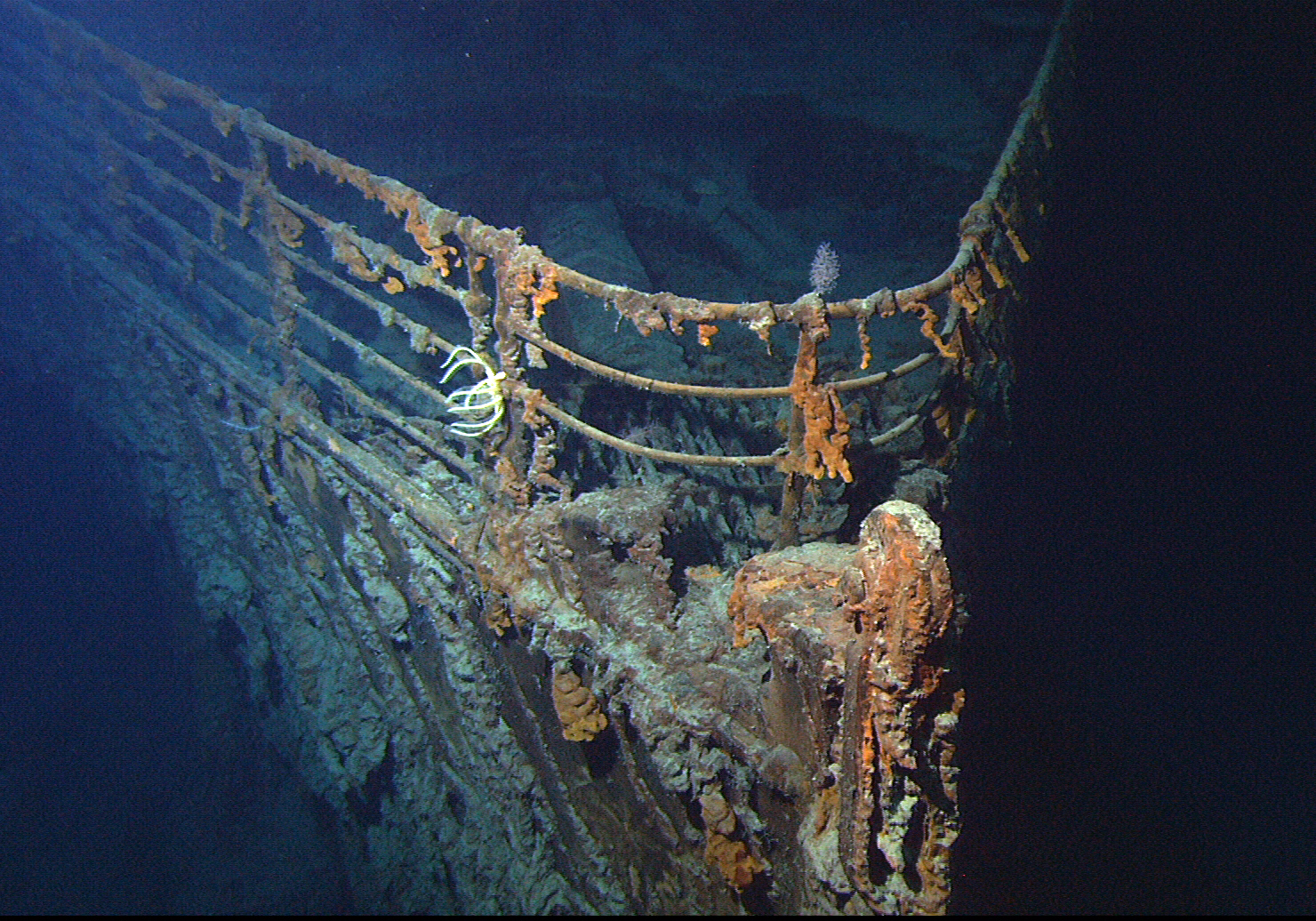 RMS Titanic   Wikipedia The bow of the wrecked RMS Titanic  photographed in June 2004