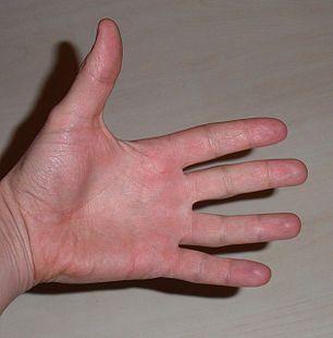 hand - Wiktionary