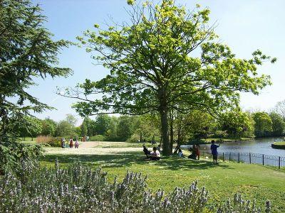 File:Alexandra Park in spring 2.JPG - Wikimedia Commons