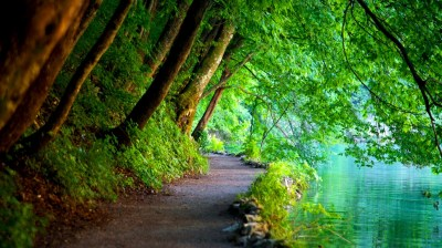 Nature | utslblog