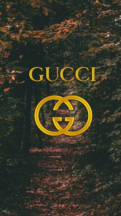 Supreme Gucci Wallpapers - Top Free Supreme Gucci Backgrounds - WallpaperAccess