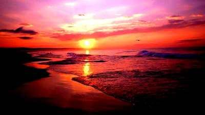 Cute Beach Wallpapers - Top Free Cute Beach Backgrounds - WallpaperAccess