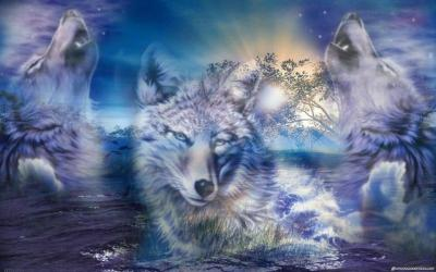 Wallpapers Wolves - Wallpaper Cave
