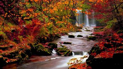 Autumn Wallpapers HD - Wallpaper Cave