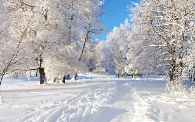 Snow HD Wallpapers - Wallpaper Cave