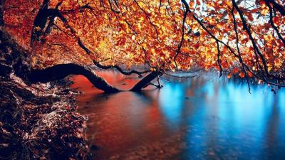 Autumn HD Wallpapers - Wallpaper Cave