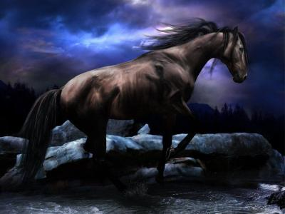 Free Horse Screensavers And Wallpapers - Wallpaper Cave