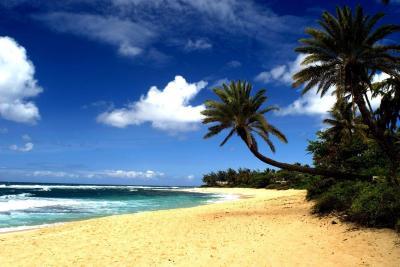 Hawaiian Beach Wallpapers - Wallpaper Cave