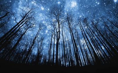 Starry Night Sky Wallpapers - Wallpaper Cave