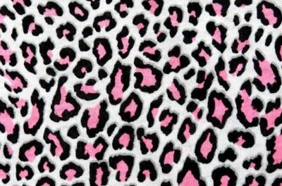 Leopard Backgrounds - Wallpaper Cave