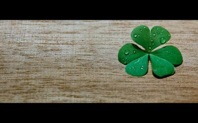 Clover Wallpapers - Wallpaper Cave
