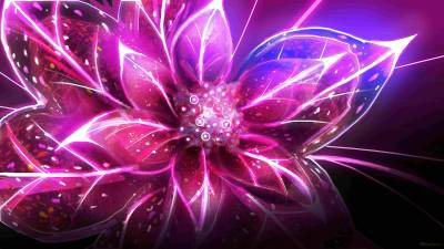 Cool Flower Wallpapers - Wallpaper Cave