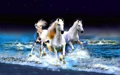 Seven Horses Wallpapers - Wallpaper Cave