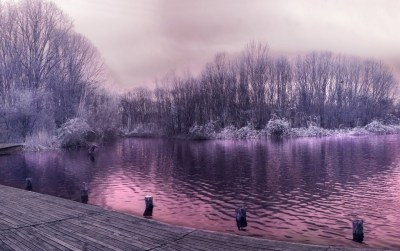 Pretty Purple Lake Trees Jetty wallpapers | Pretty Purple Lake Trees Jetty stock photos