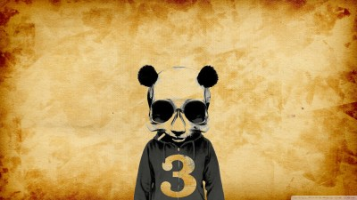 Crazy Panda - Full HD 4K HD Desktop Wallpaper for 4K Ultra HD TV • Wide & Ultra Widescreen ...