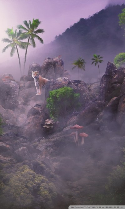 Into the Pride by Paradise of Creativity Parimal Nakrani 4K HD Desktop Wallpaper for 4K Ultra HD ...