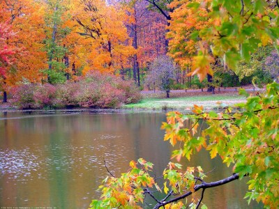 Autumn desktop wallpaper ·① Download free stunning full HD wallpapers for desktop and mobile ...