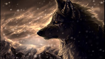 Cool Wolf Backgrounds ·① WallpaperTag