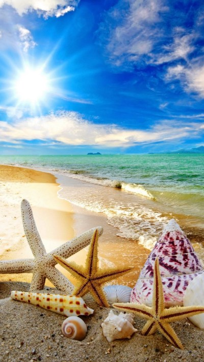 Cool Summer Backgrounds ·①