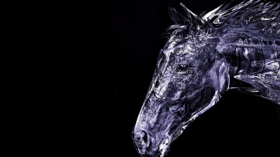 60+ Horse backgrounds ·① Download free stunning High Resolution wallpapers of Horses for desktop ...