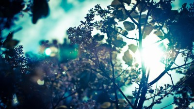 23+ Cool Tumblr backgrounds ·① Download free beautiful wallpapers for desktop computers and ...