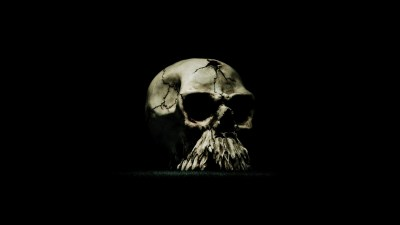 Cool Skeleton Wallpapers ·① WallpaperTag