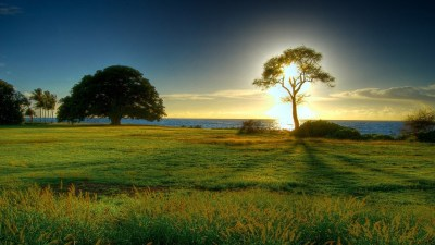 Nature background HD ·① Download free cool full HD backgrounds for desktop, mobile, laptop in ...
