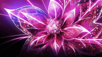 Cool Flower Wallpapers ·① WallpaperTag
