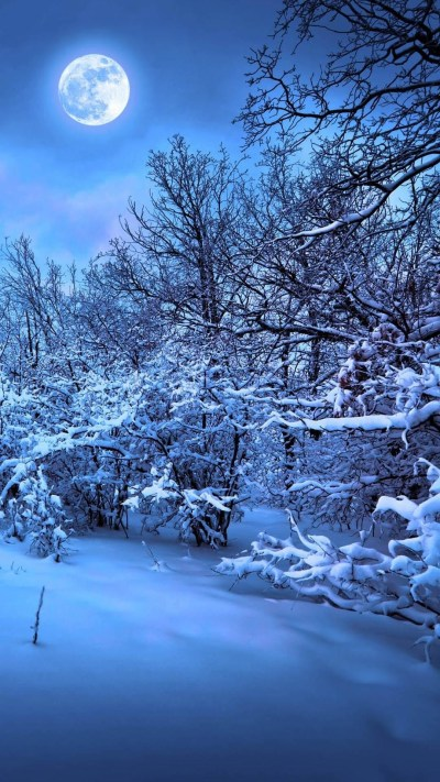 Winter Themed Backgrounds ·①