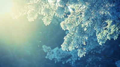 Winter wallpaper 1920x1080 ·① Download free amazing High Resolution backgrounds for desktop ...
